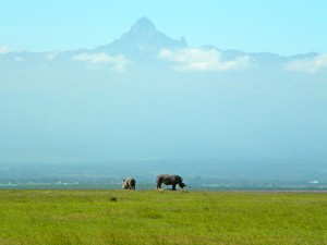 Mt Kenya and Rhino at Ol Pejeta Conservancy in Kenya