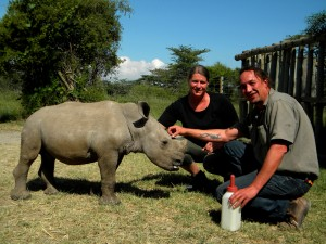 Feeding Ringo the Rhino in Ol Pejeta Conservancy is an exclusive activity with Africa Expedition Support.