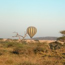 There are few better ways to experience the Masai Mara National Reserve then floating over herds of wildlife in a hot air balloon