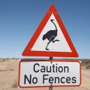 A reminder to all self drivers that animals have right of way even on main roads in Namibia