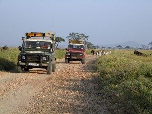 There is so much to see and explore driving through the Serengeti National Park