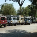 Ndovu, Phoenix, Veronica, Maddie, Stefan and Kermit, a few of our fleet of trusty Land Rover Defenders ready to go on safari