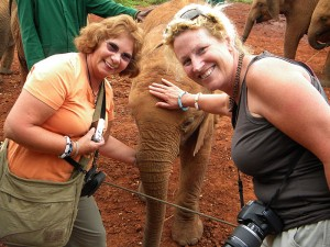 Meeting baby elephants at David Sheldrick elephant orphanage in Nairobi