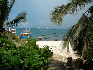 Zanzibar offers so much from historical walks, stunning beaches, brilliant diving, lovely resorts and exotic fruits. Or you can just sit back, relax and watch boats go by.