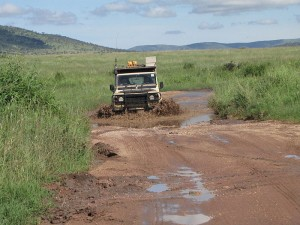 Sometimes we just have to engage low range and have some 4x4 fun in the Serengeti National Park. Our Land Rover Defenders are built for durability and mud!