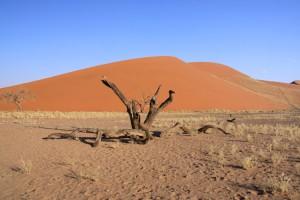 namibia dune 45 at sunset