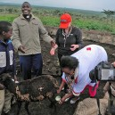 Chief Ole Mapengo explains how to milk a goat to a group taking break from installing solar power systems in Kenya