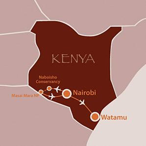 Masai Mara kenyan coast