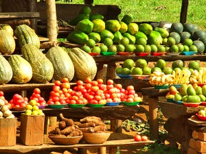 There is no shortage of yummy fresh fruit and veg grown locally and sold locally