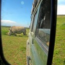Take care when reversing! You never know what is behind you in Africa!