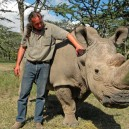 Giving Sudan the last male Northern White Rhino male in the world some words of encouragement at Ol Pejeta Conservancy, Kenya