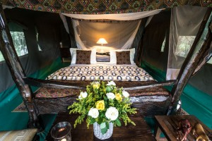 Tented camp accommodation is proper glamping.
